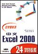 中文Excel 2000 24学时学习教程[按需印刷]