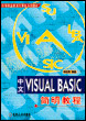 中文Visual Basic简明教程