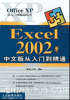 Excel 2002中文版从入门到精通