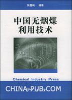 (赠品)中国无烟煤利用技术