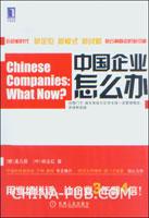 (赠品)中国企业怎么办:目标、标杆对比和创新战略等的应用和实践