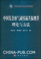 中国复杂油气藏核磁共振测井理论与方法[按需印刷]
