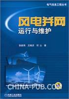 风电并网运行与维护