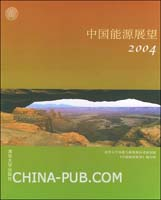 中国能源展望(2004)
