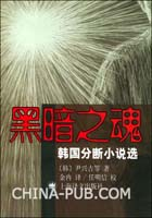 黑暗之魂:韩国分断小说选