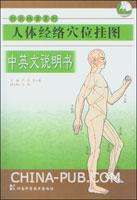 针灸推拿系列:人体经络穴位挂图(2010最新版)