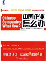 (特价书)中国企业怎么办:目标、标杆对比和创新战略等的应用和实践