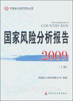 [特价书]2009国家风险分析报告(上、下册)