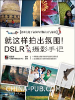 (特价书)就这样拍出氛围!:DSLR摄影手记
