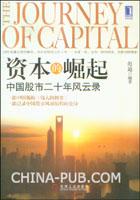 资本的崛起:中国股市二十年风云录[按需印刷]