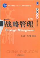(特价书)战略管理.第2版
