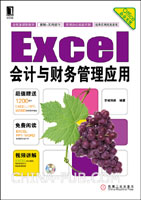 Excel会计与财务管理应用[按需印刷]