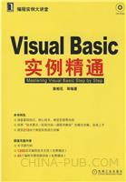 (特价书)Visual Basic实例精通