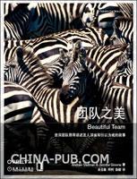 团队之美(资深团队领导讲述发人深省和引以为戒的故事)(china-pub全国首发)