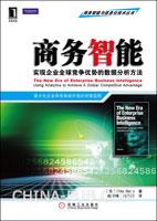 (特价书)商务智能:实现企业全球竞争优势的数据分析方法