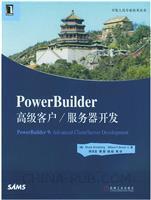 PowerBuilder高级客户/服务器开发[按需印刷]