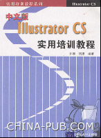 中文版Illustrator CS实用培训教程