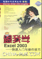 跟我学Excel 2003――快速入门与操作技巧[按需印刷]