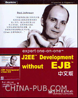 Expert One-on-One J2EE Development without EJB中文版
