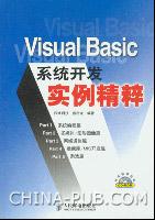 Visual Basic系统开发实例精碎[按需印刷]