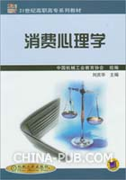 消费心理学(21世纪高职高专规划教材)