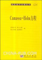 (特价书)Camassa-Holm方程