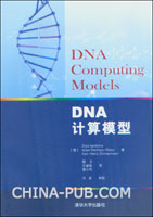DNA计算模型