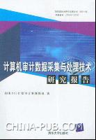 计算机审计数据采集与处理技术研究报告