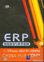 ERP系统规划与典型案例--利用Access 2003开发中小型ERP系统