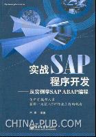 实战SAP程序开发