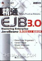 精通EJB 3.0