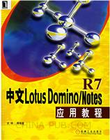 中文Lotus Domino/Notes R7应用教程