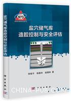 盐穴储气库造腔控制与安全评估