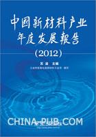 中国新材料产业年度发展报告(2012)