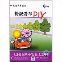 扮靓爱车DIY-(1碟装)(VCD)