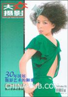 大众DV(2008.12 B版)(附光盘)