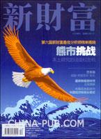 新财富(2008年12月号 总第92期)