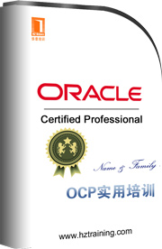 第04讲Oracle10gOCP深入理解数据库架构(一)