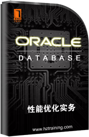 oracle数据库性能优化实务第1集性能优化概述