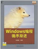 Windows编程循序渐进[图书]