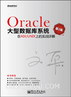 Oracle大型数据库系统在AIX/UNIX上的实战详解(第2版)