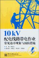 10kV配电线路带电作业常见违章现象与预防措施