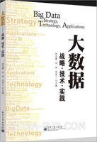 大数据:战略 技术 实践