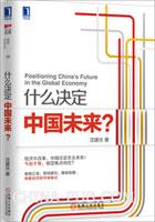 (特价书)什么决定中国未来?