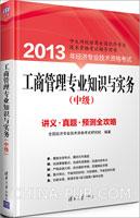 工商管理专业知识与实务(中级):讲义、真题、预测全攻略(2013年)