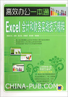 Excel会计和财务实战技巧精粹