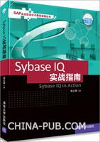 (赠品)Sybase IQ实战指南