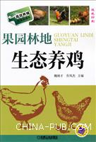 果园林地生态养鸡