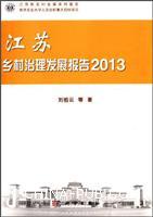 2013-江苏乡村治理发展报告
