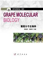 葡萄分子生物学[按需印刷]